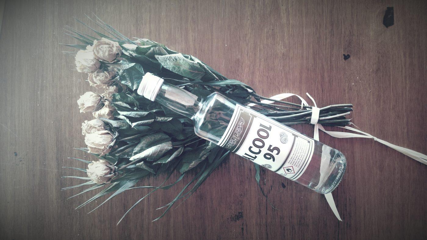 Alcool & Plantes
