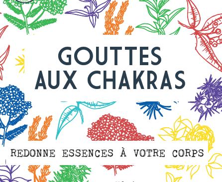 Gouttes aux Chakras Gemmotherapie Eaux florales